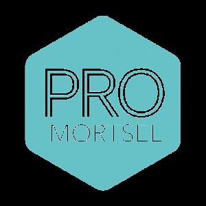 Logo Pro-Mortsel